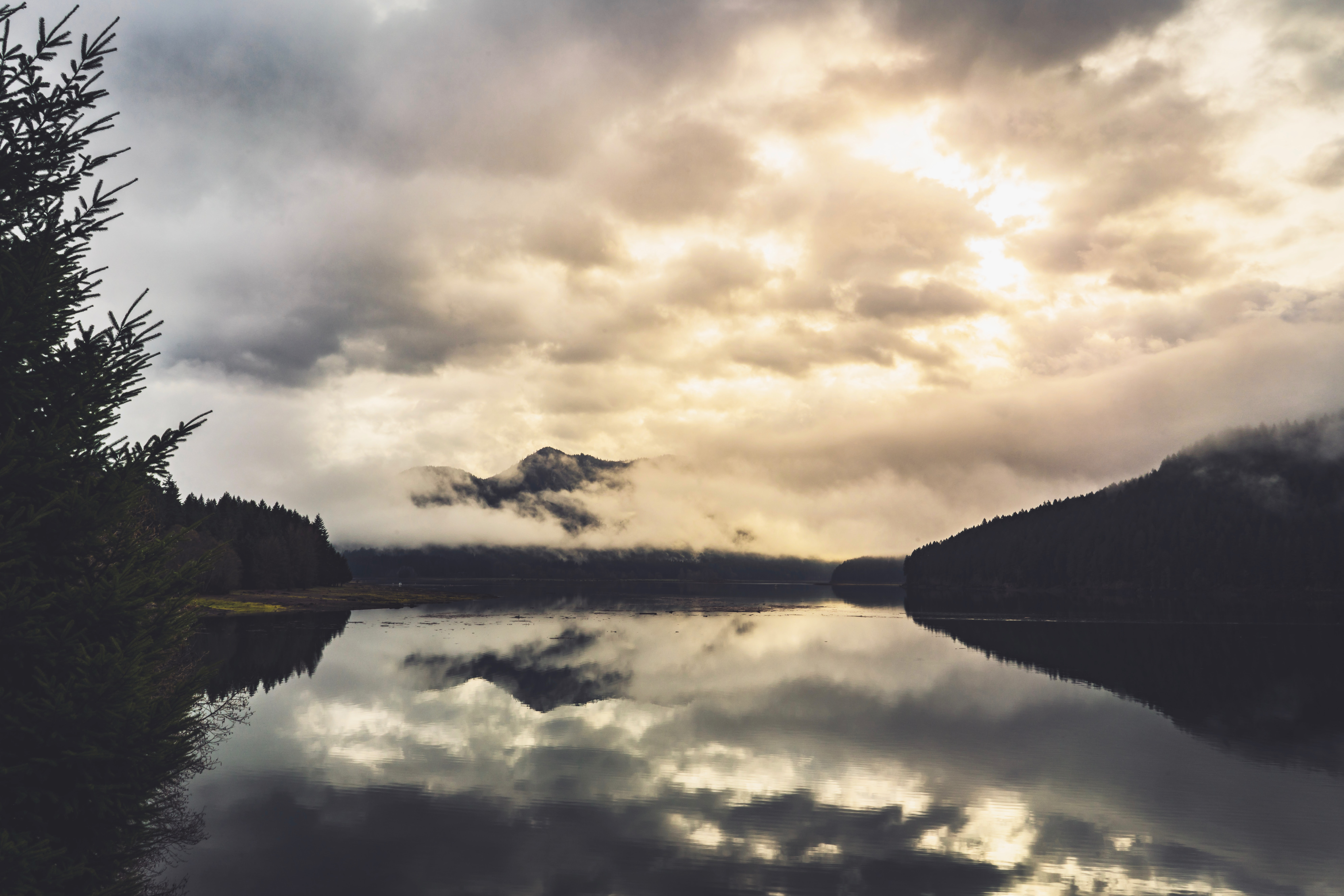 landscape photography of body of water between forest