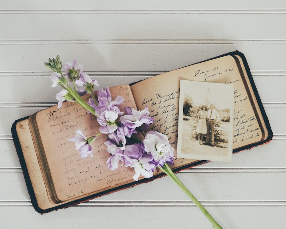 purple flowers on brown open book
