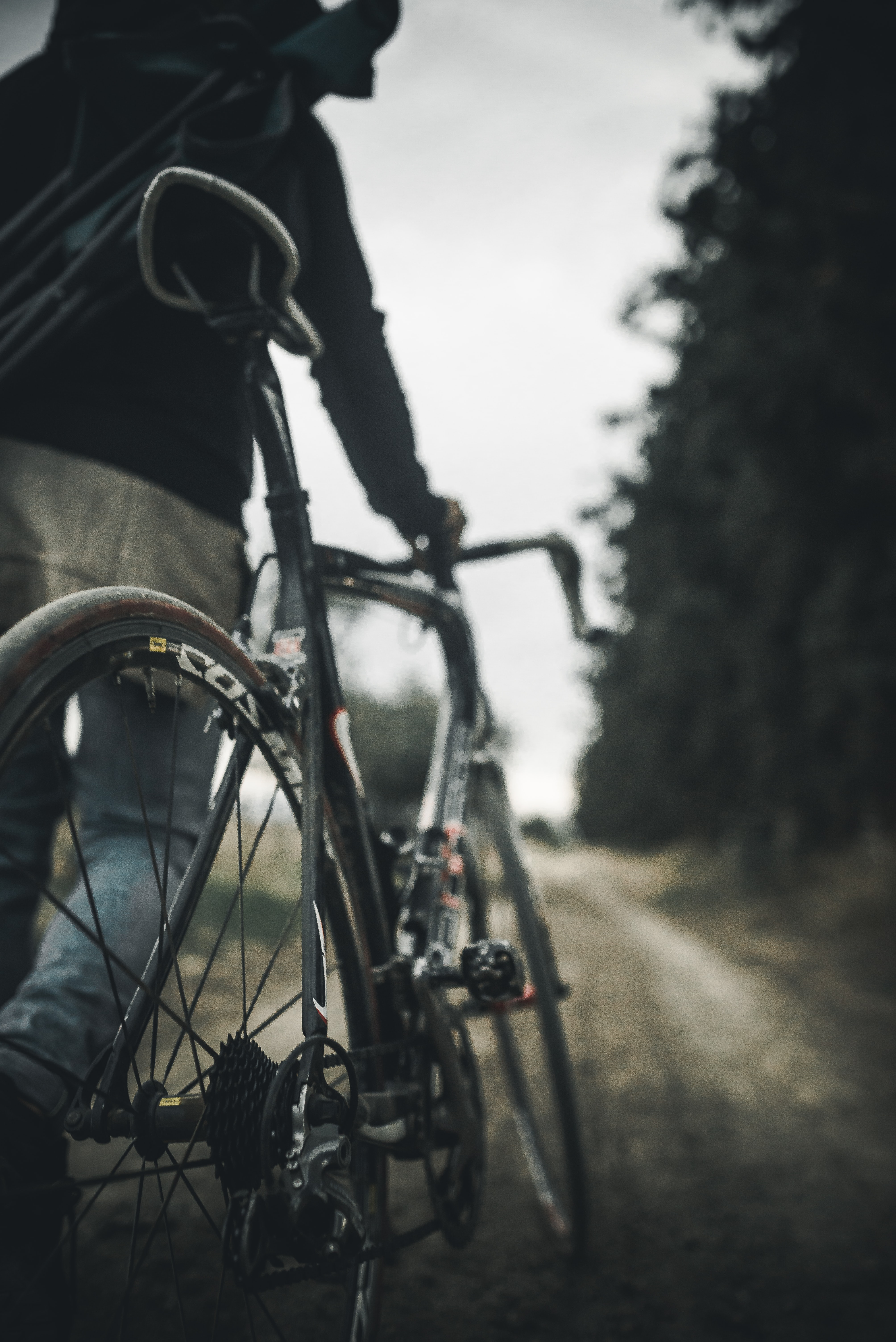 selective focus photography of person holding gray road bike on road