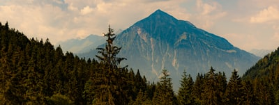 mountain near trees