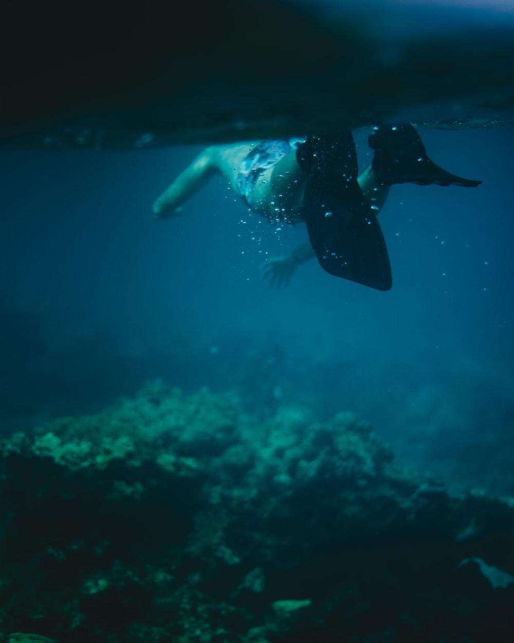 man in black flippers in body of water