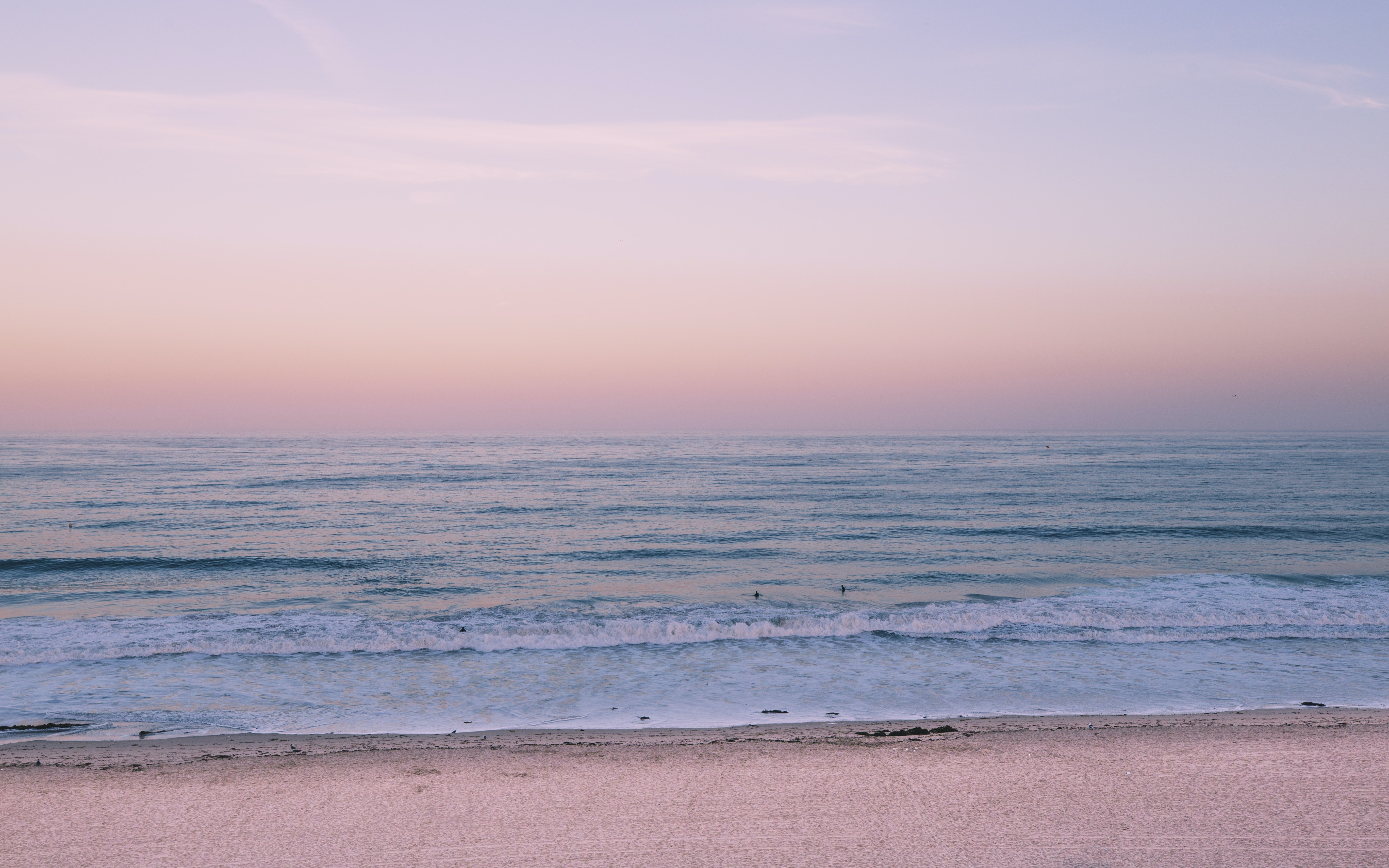pink and blue beach shore