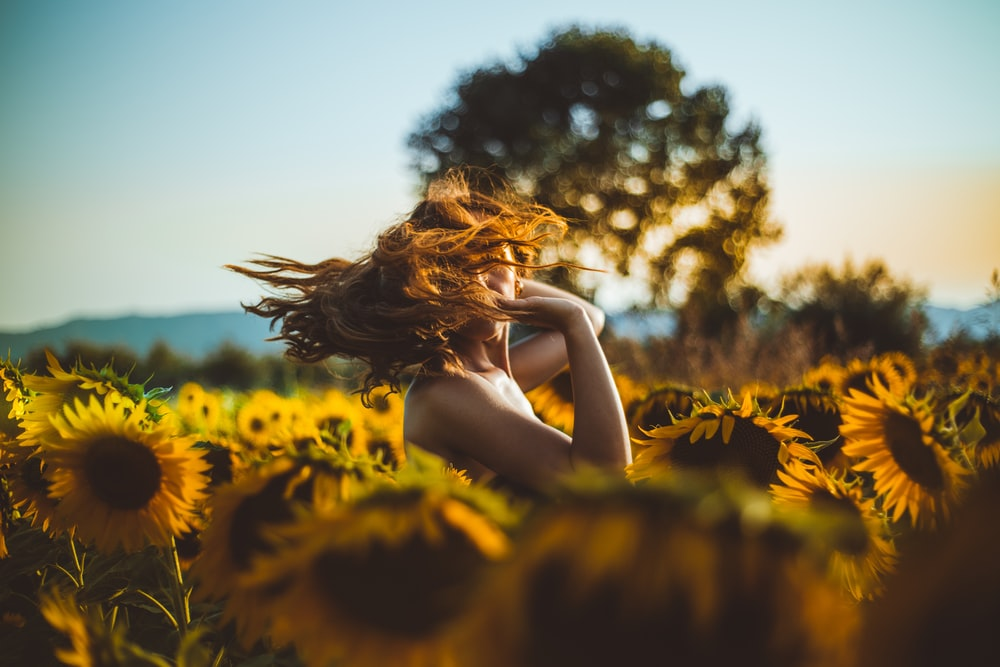 woman standing in middle of sunflower field