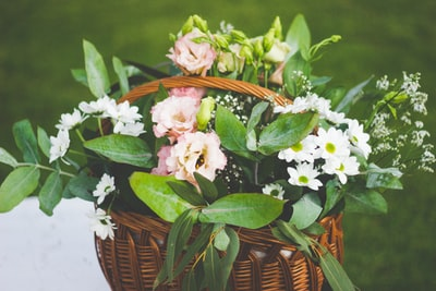 white and pink flowers in wicker basket bouquet teams background