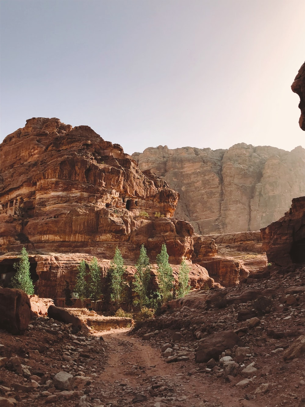 brown canyon during daytime