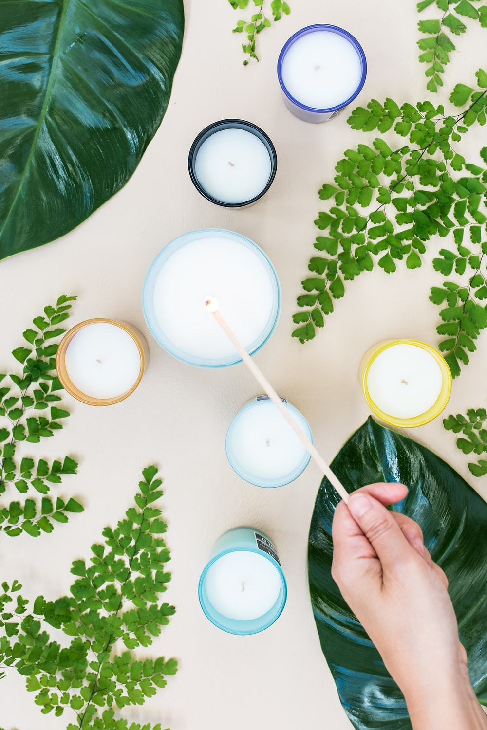 candles near green plants