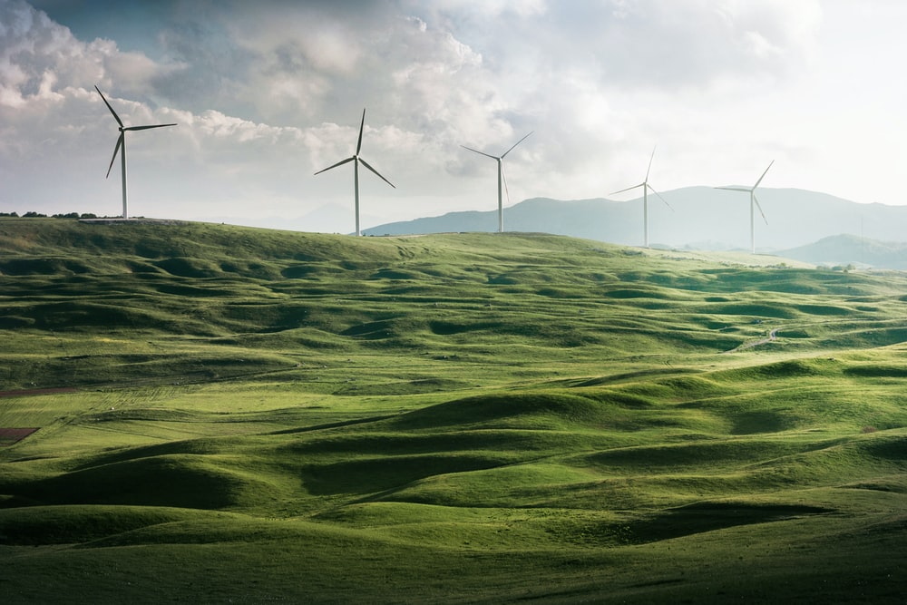 wind turbine surrounded by grass
