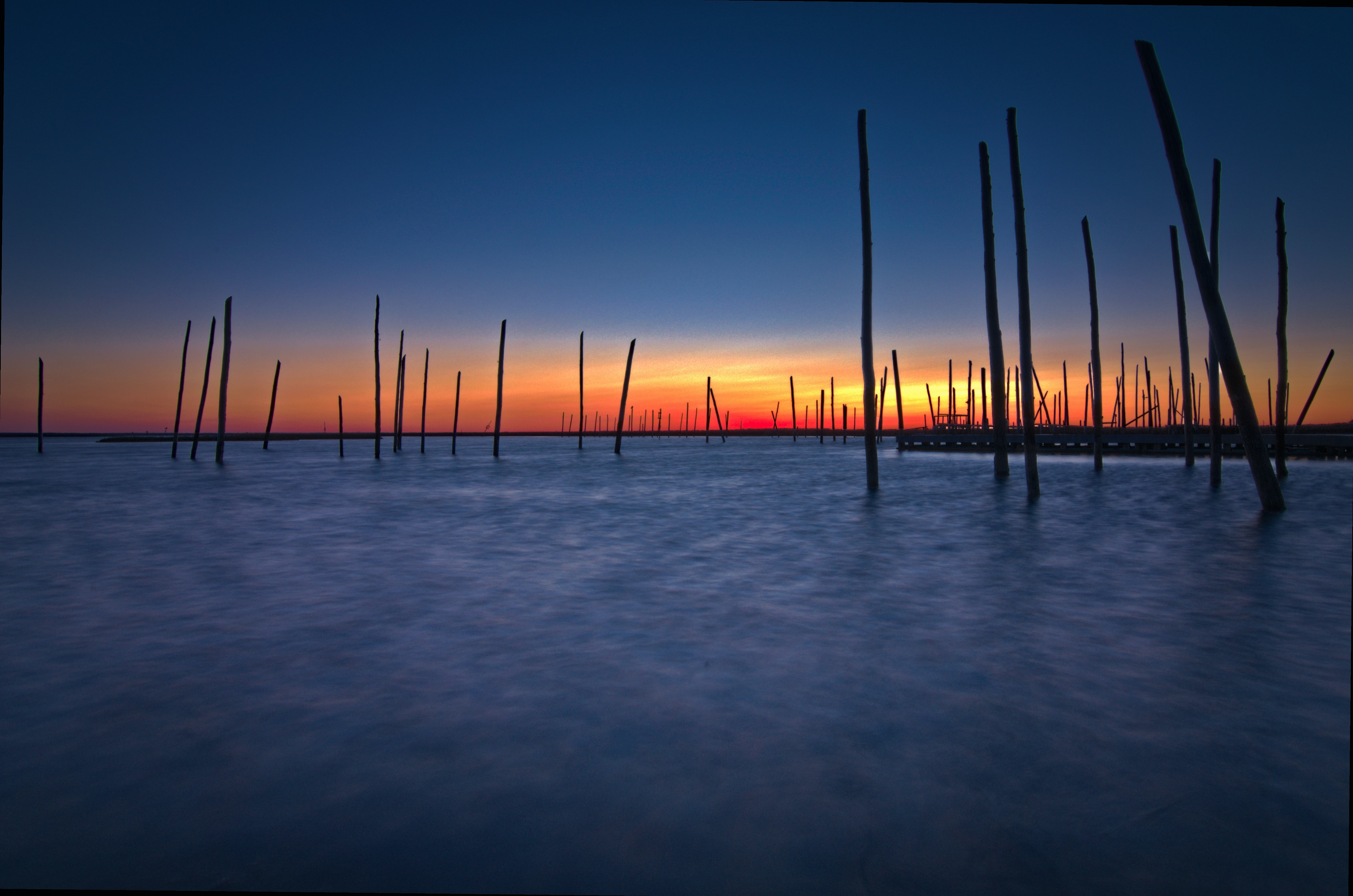 body of water with wooden sticks