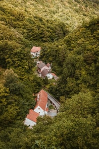 aerial view of house on forest