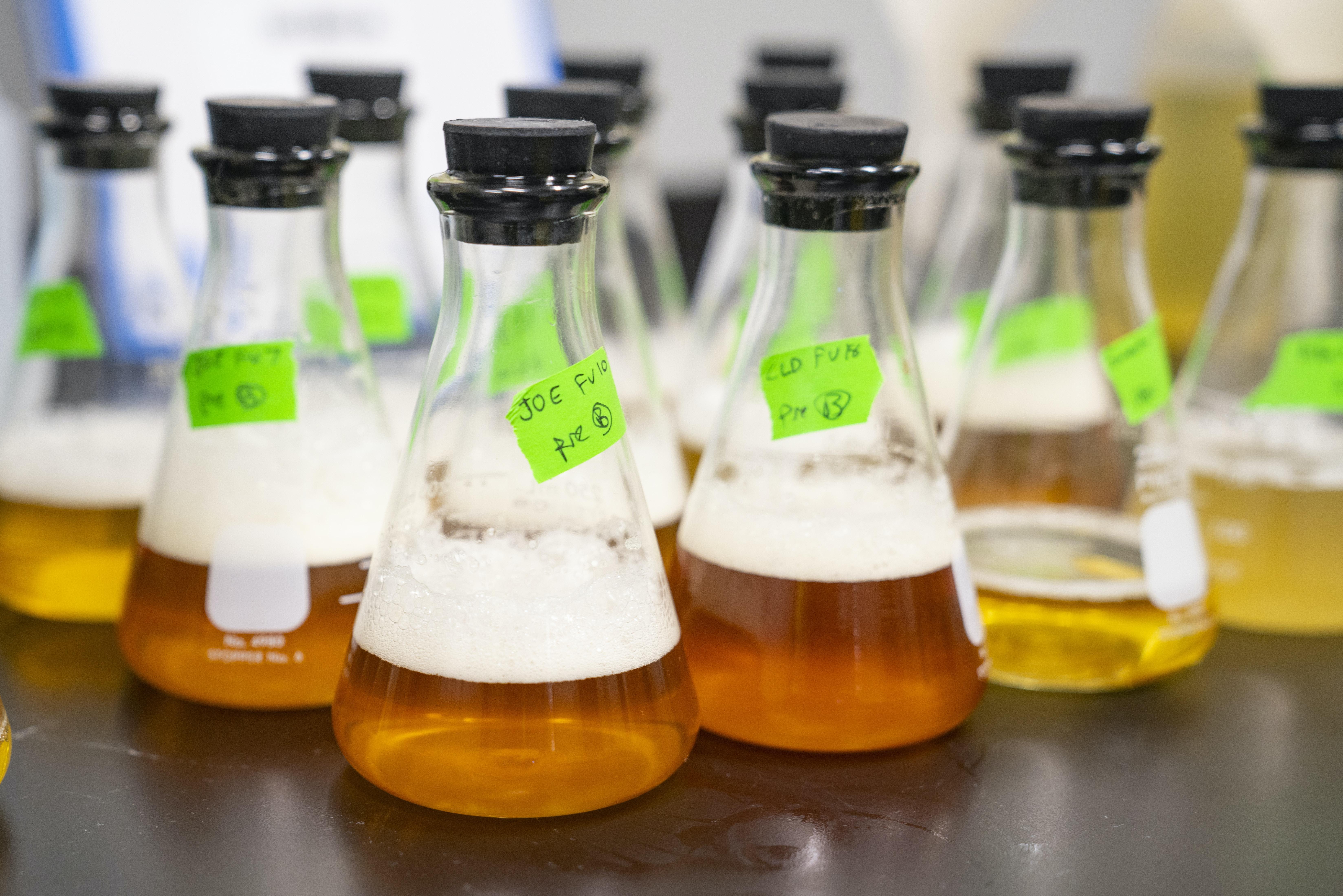 clear glass Erlenmeyer flask lot