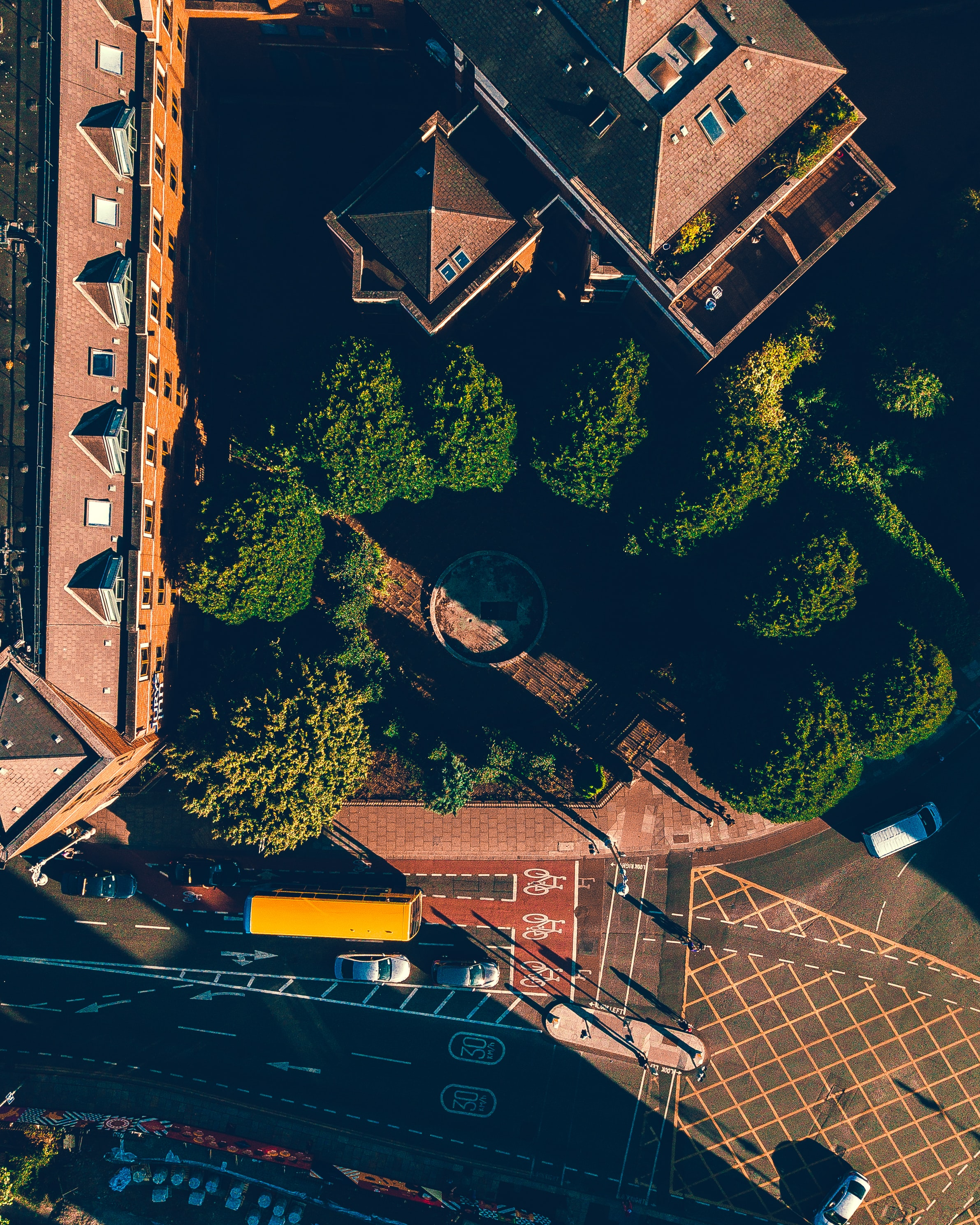 aerial photo of house with green leaf trees