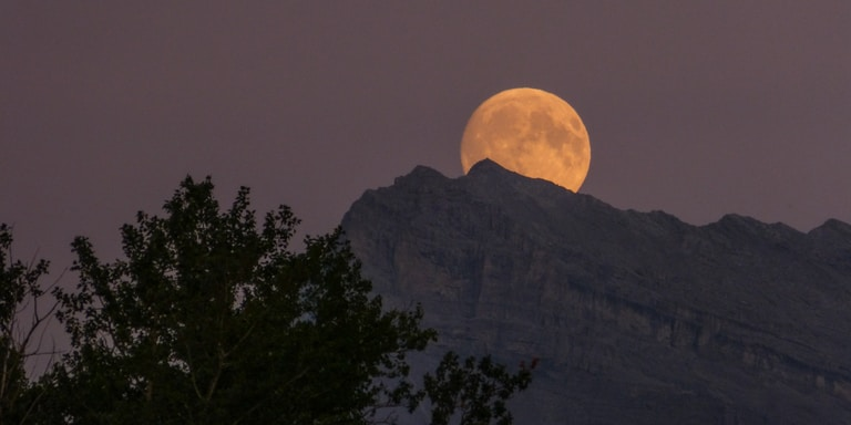 Here's What Each Zodiac Sign Can Expect From The Full Moon InLeo