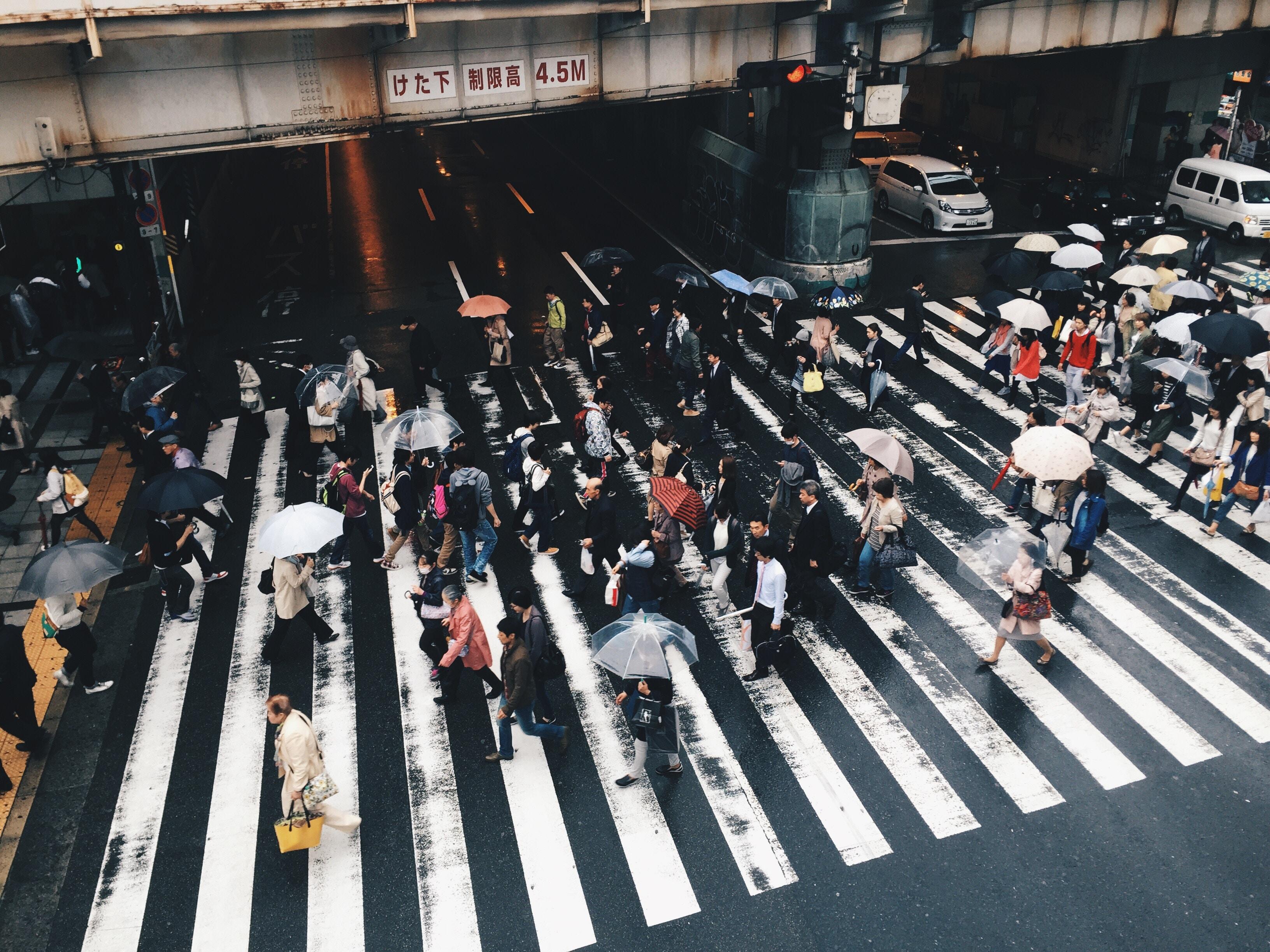 people crossing on pedestrian lane while raining