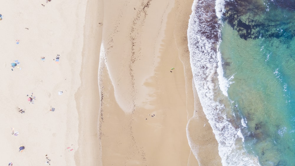 aerial photo of people on brown sand near body of water