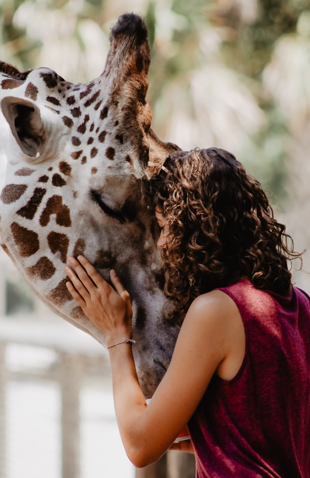 forced perspective photography of woman hugging giraffe