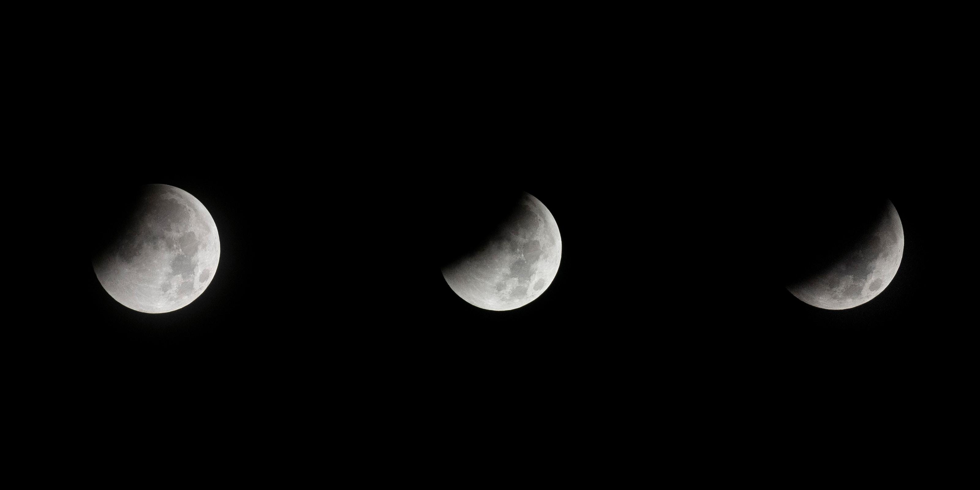 closeup photo of half moons