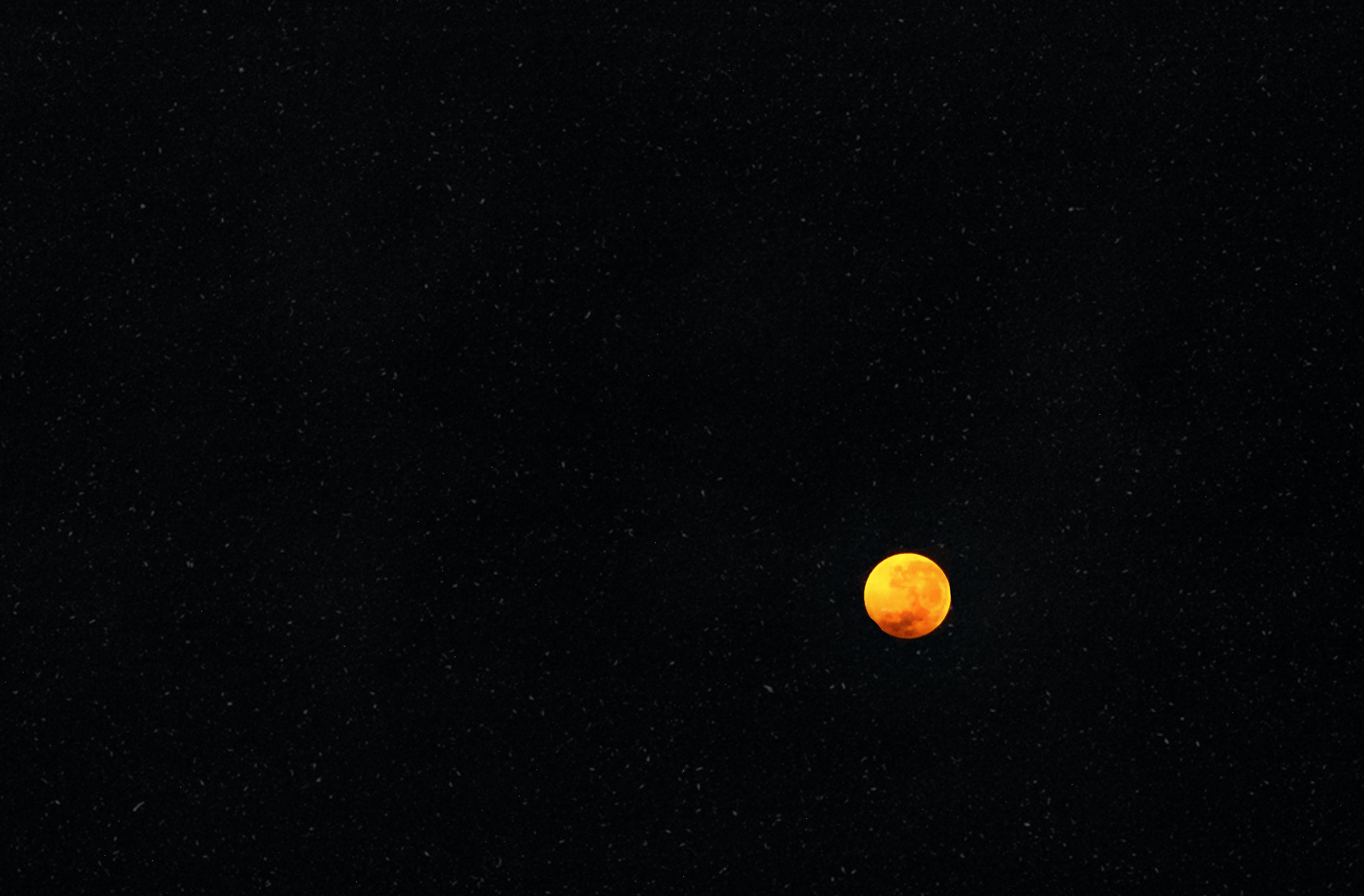 Blood Moon photo