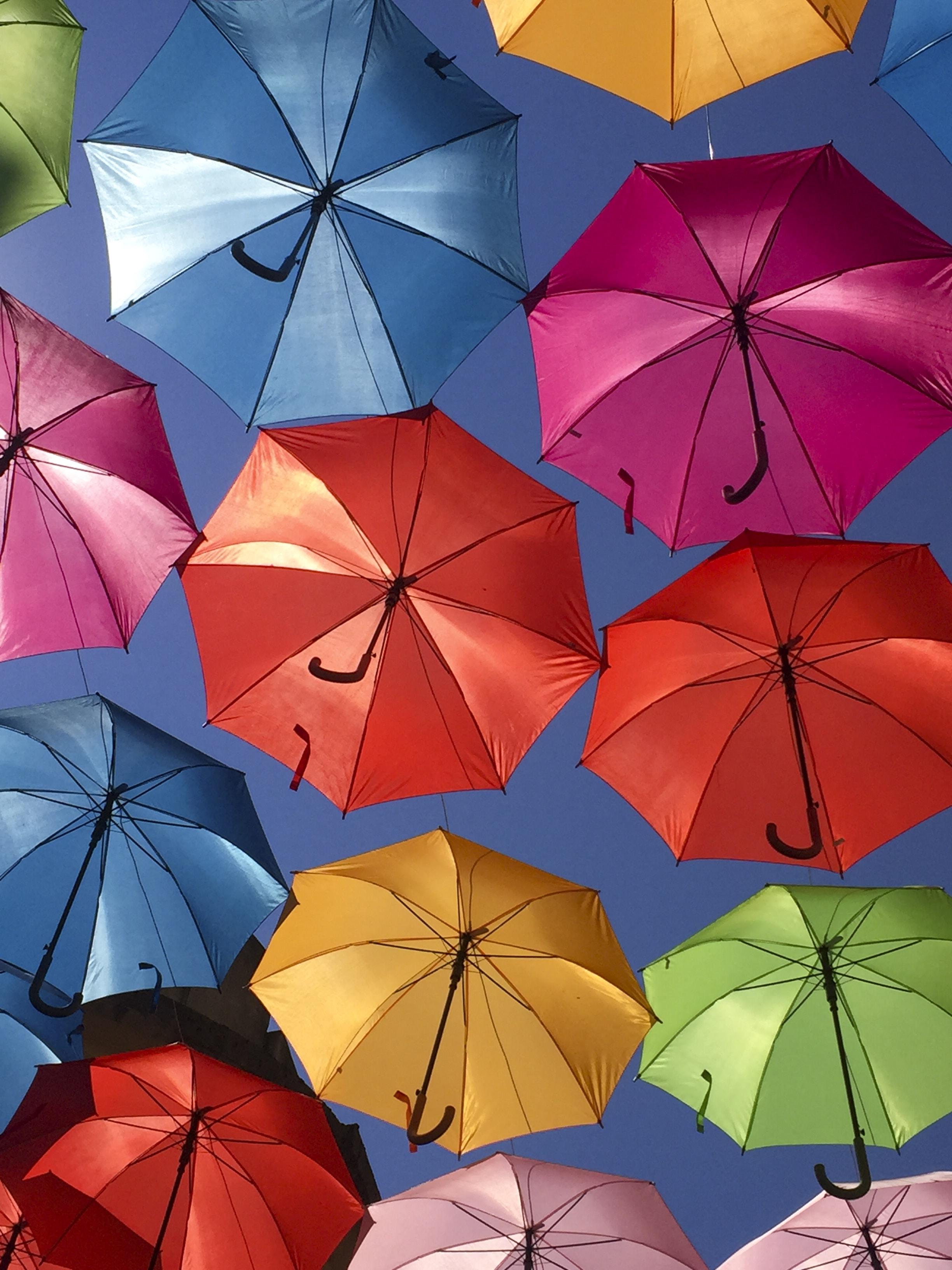 assorted-colored umbrella decor at daytime