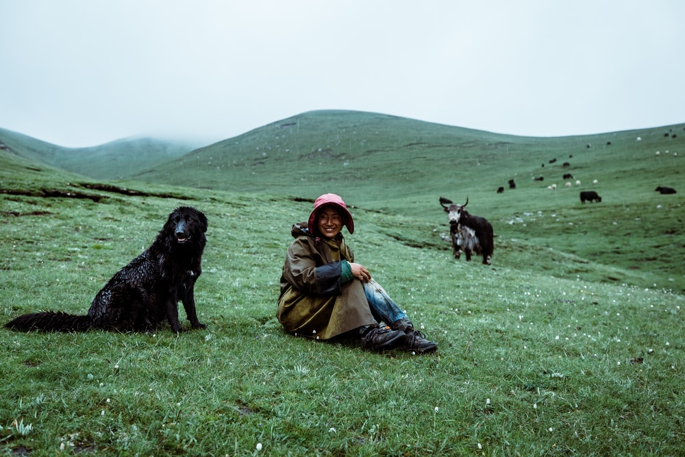 woman sitting on green grass field