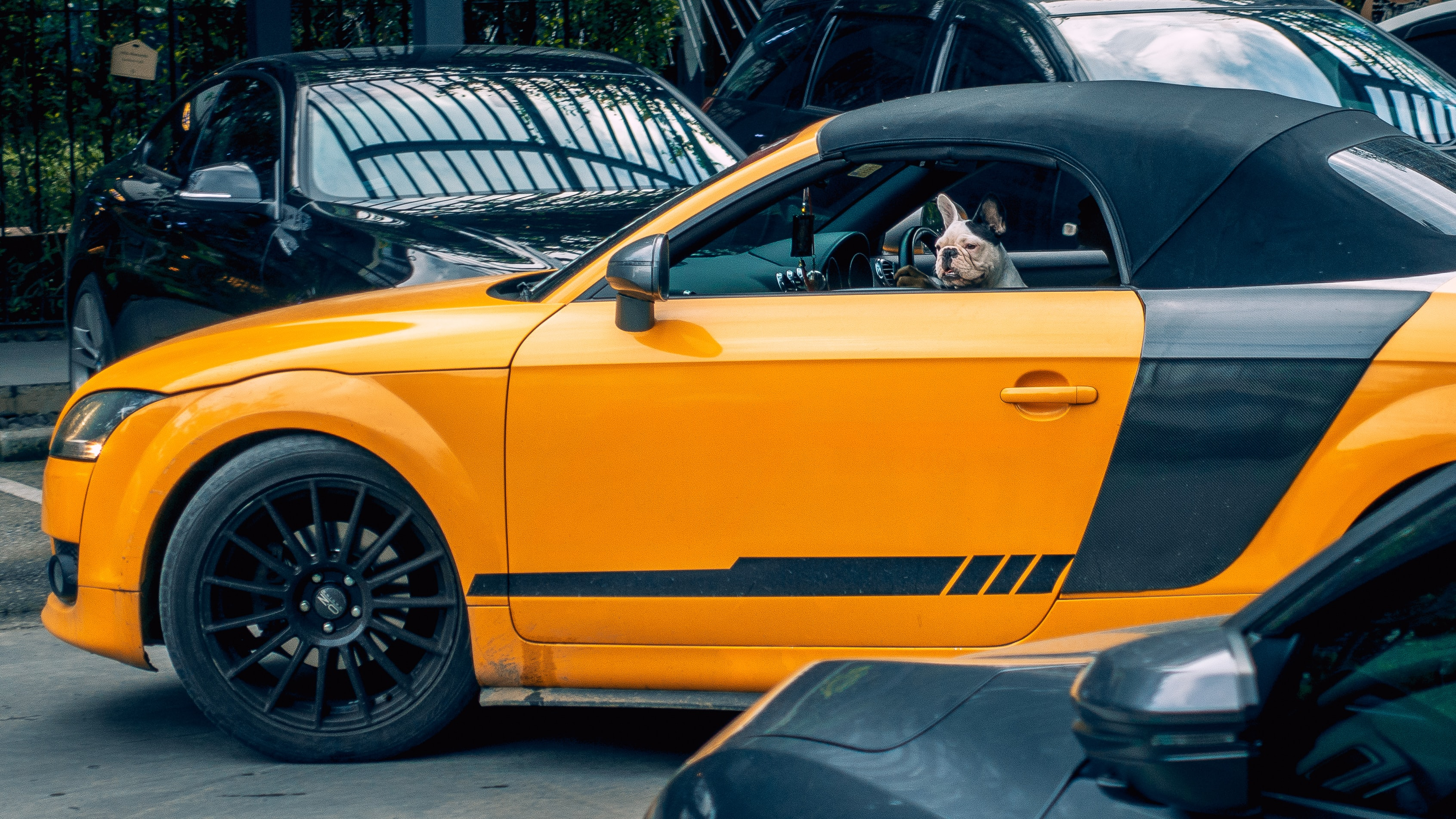 yellow and black coupe