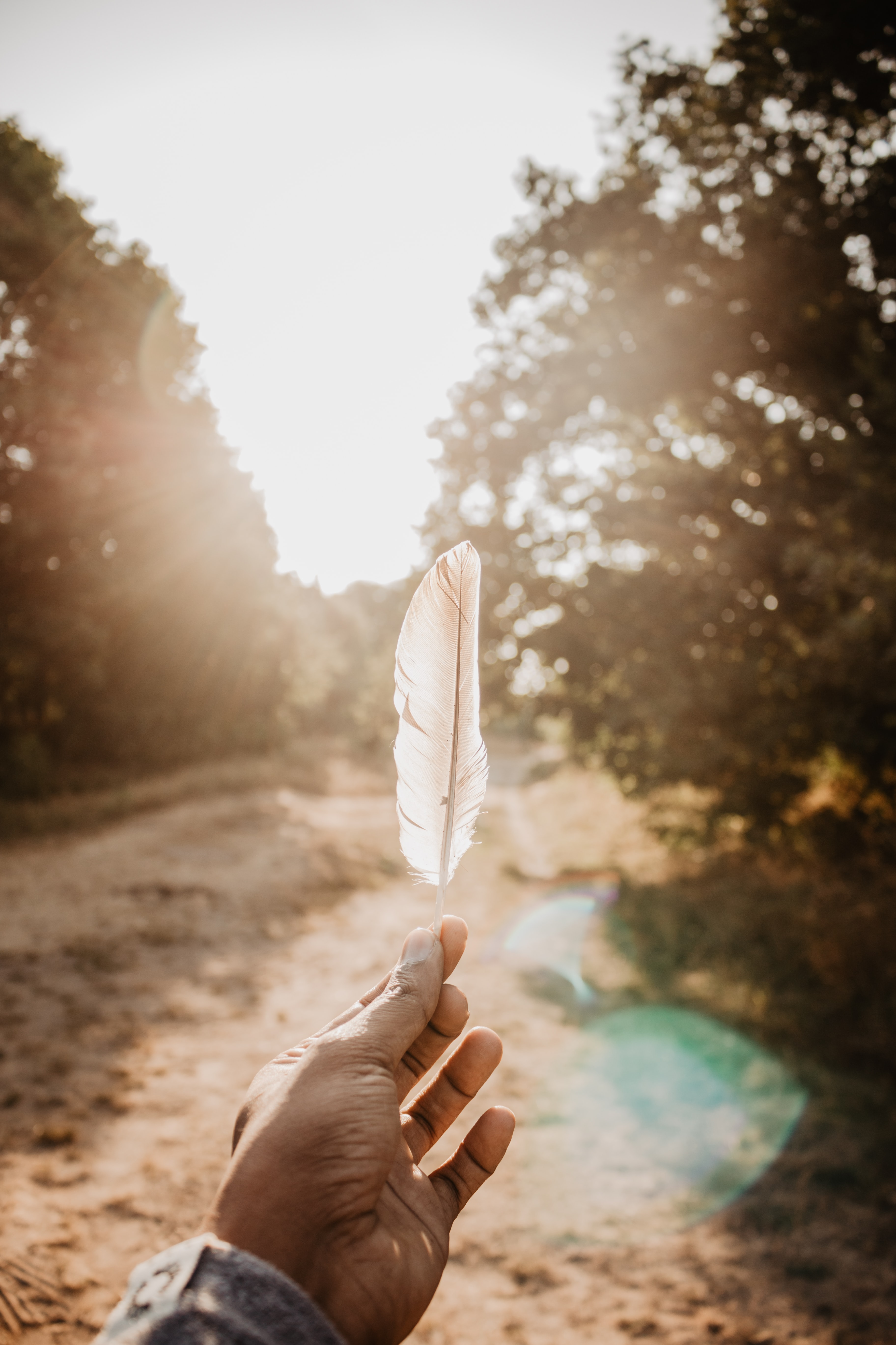 person holding white feather during daytime