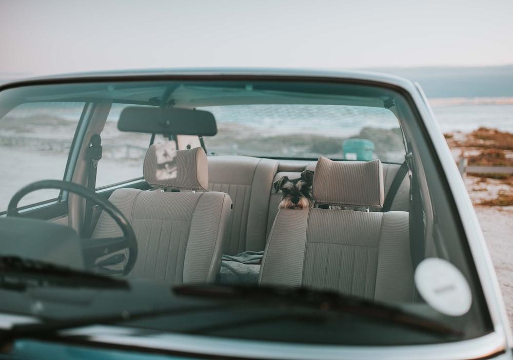 white vehicle near sea at daytime