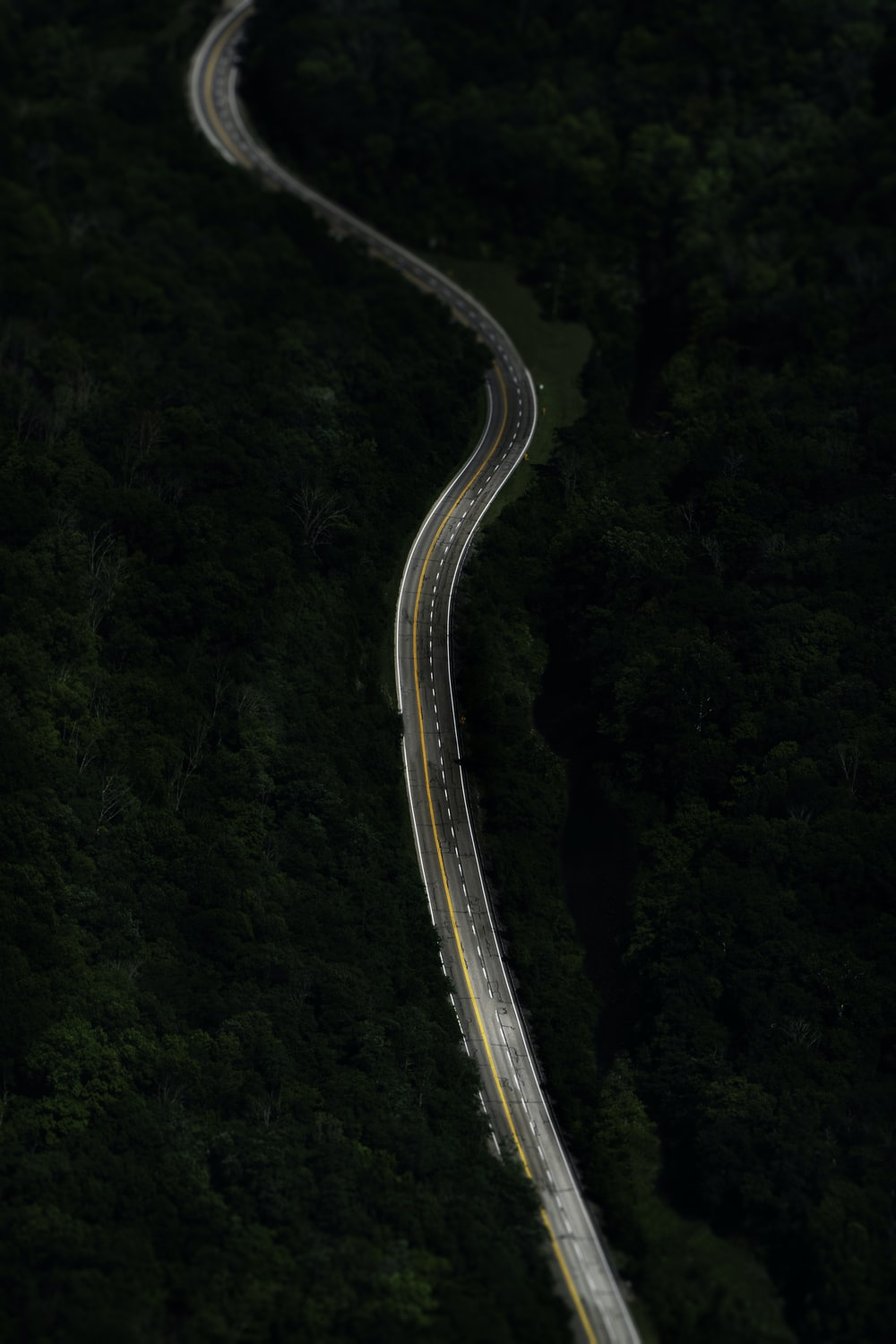 winding asphalt road surrounded by tall trees aerial photography