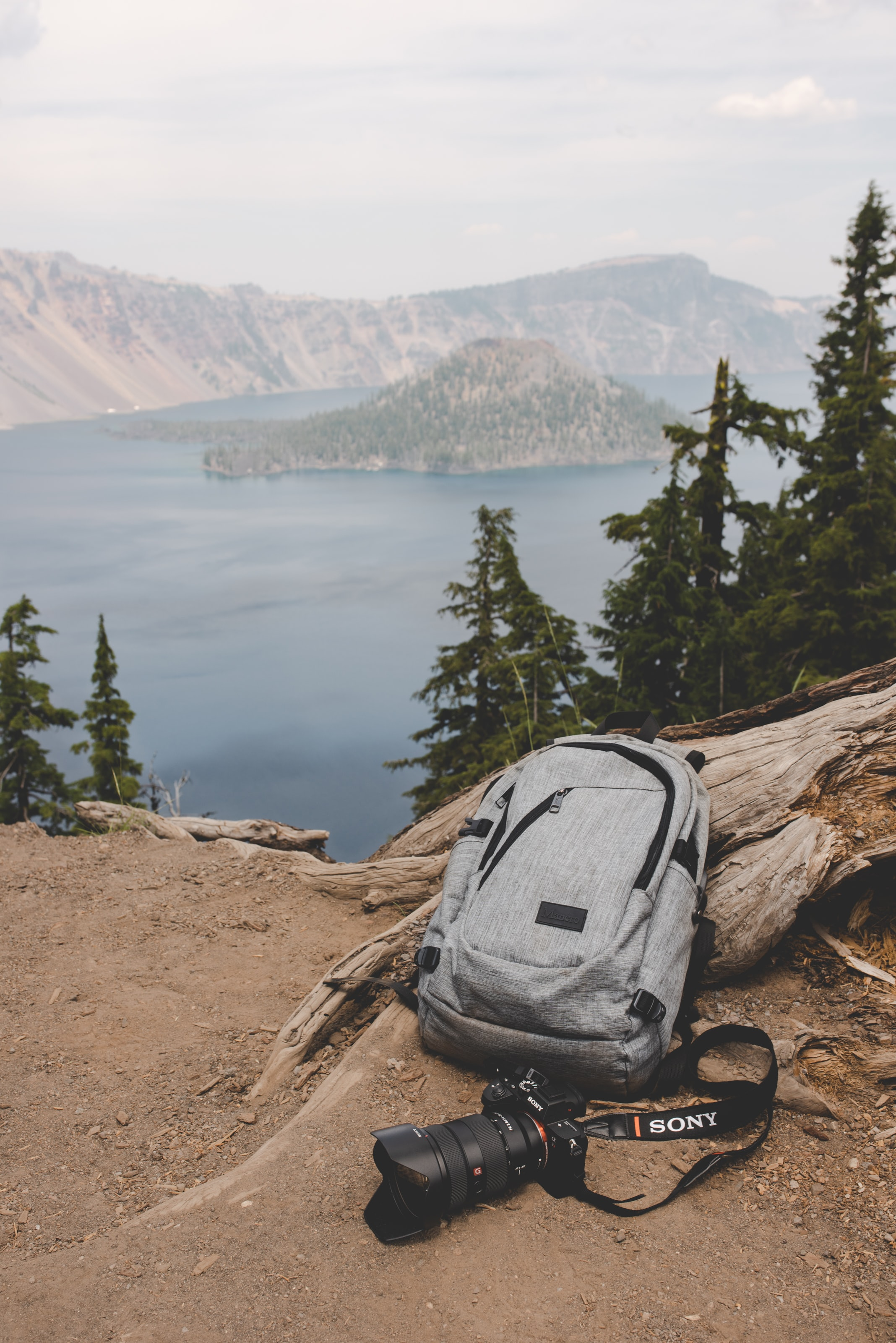 gray and black backpack beside gray tree log and black Sony DSLR camera