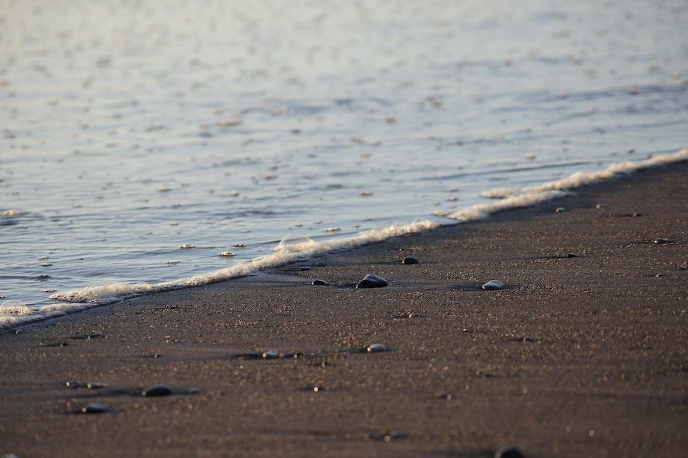 pebbles at shore