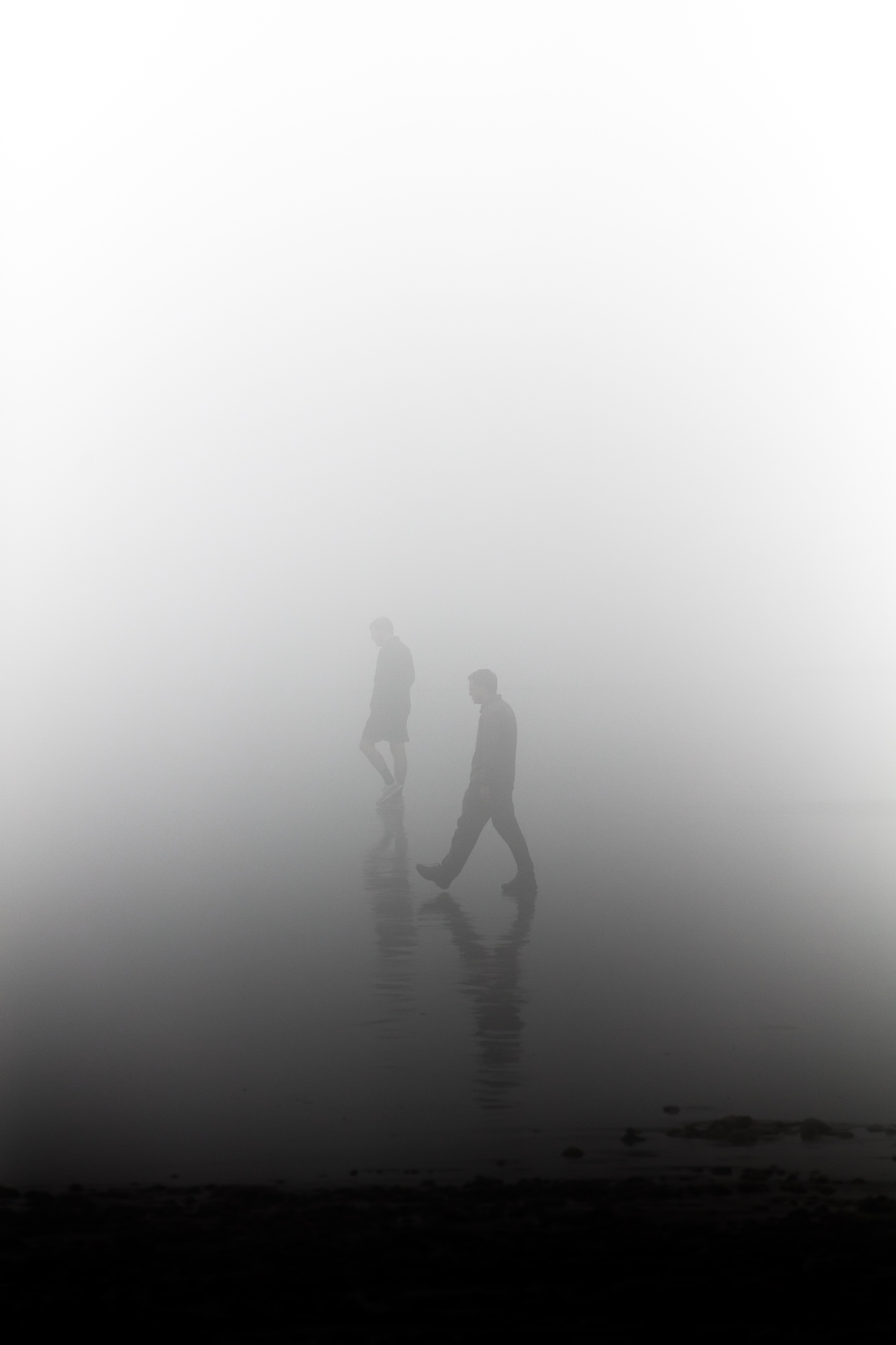 silhouette of man during foggy day