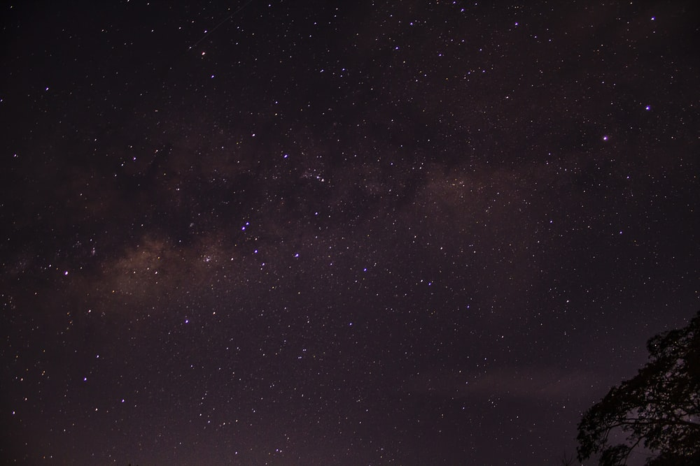 star filled nighttime sky