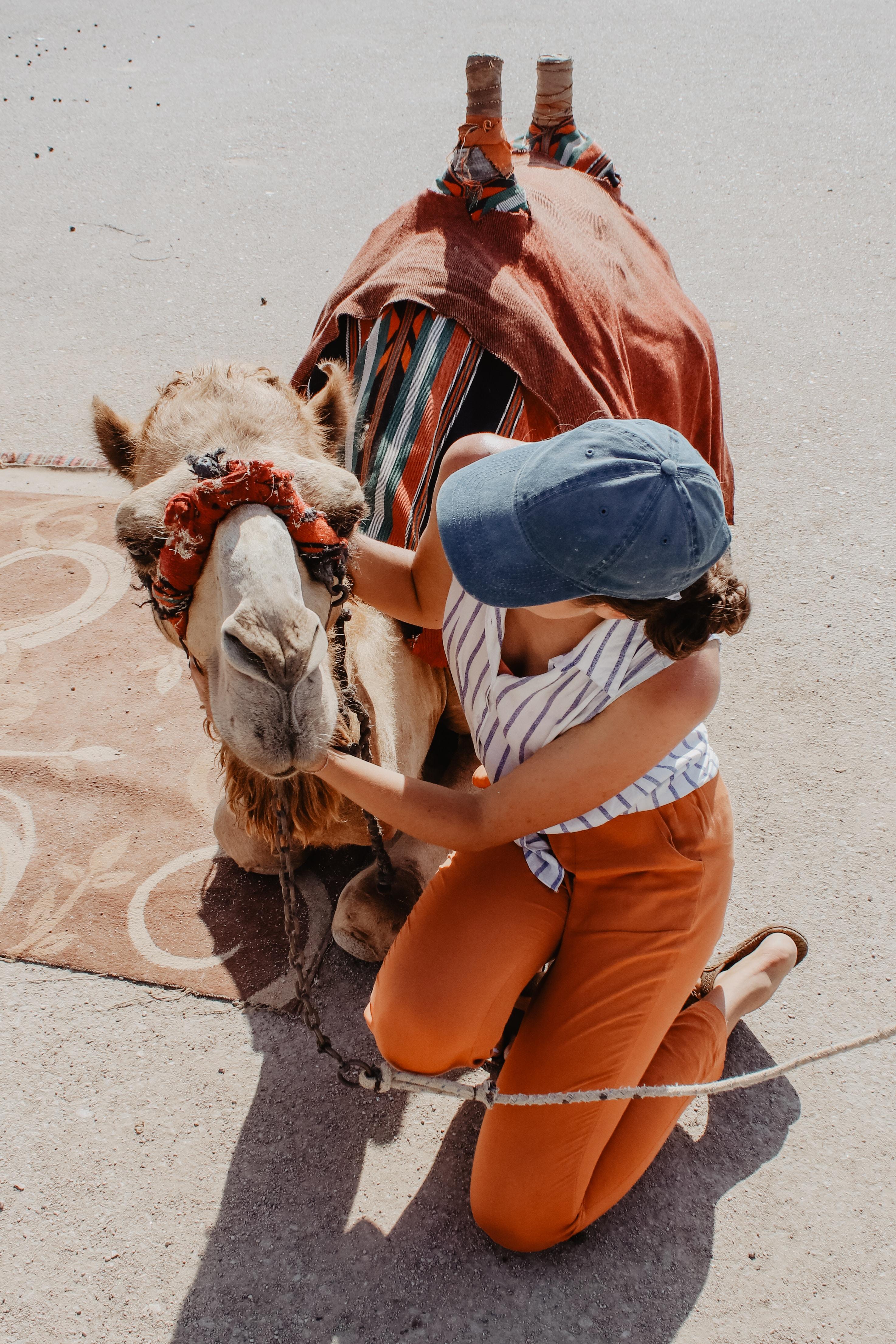 woman kneeling on ground beside brown camel