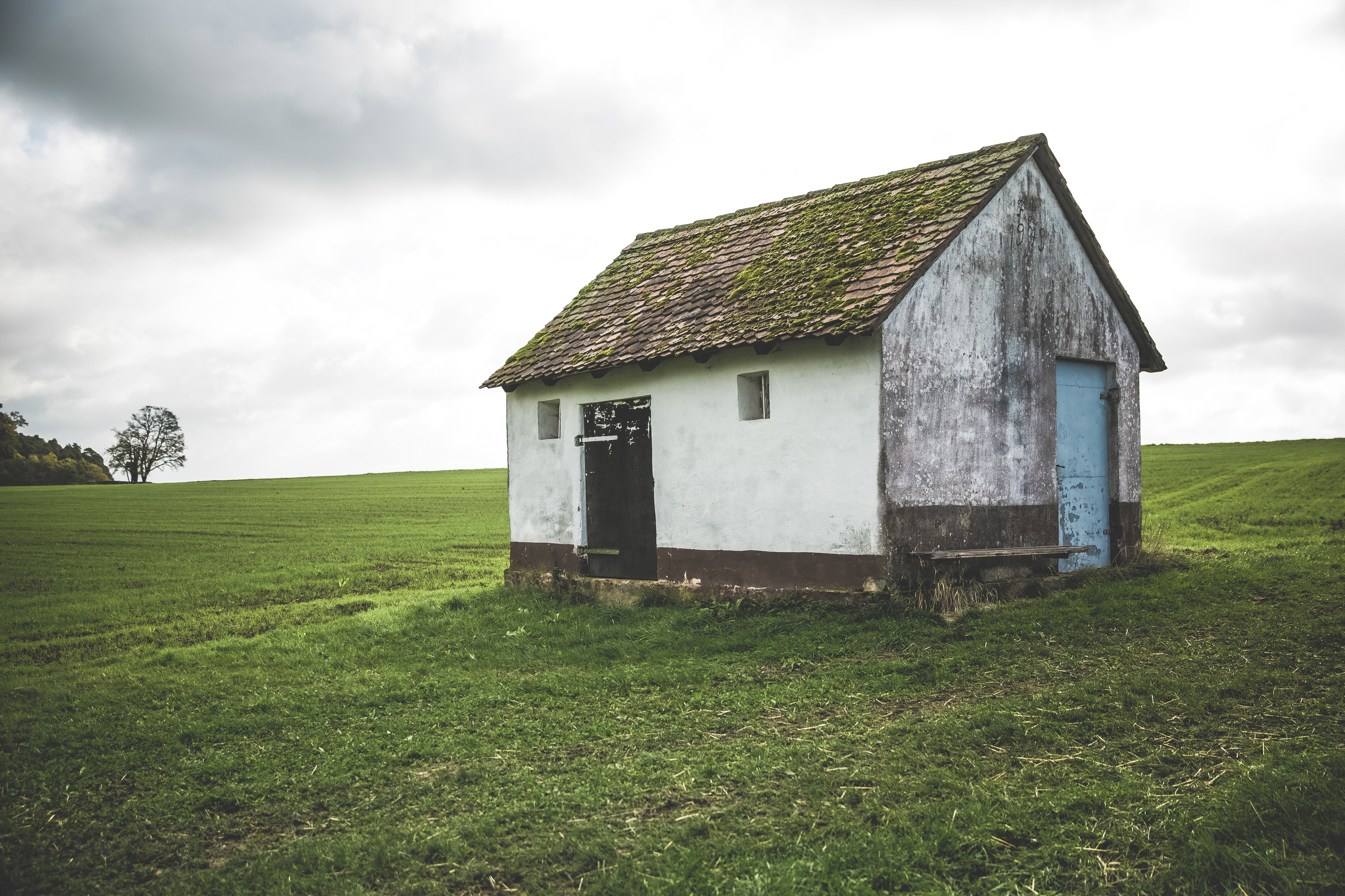 brown and white wooden shed on field of grass