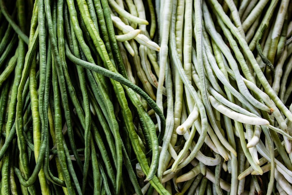 bundle of string beans