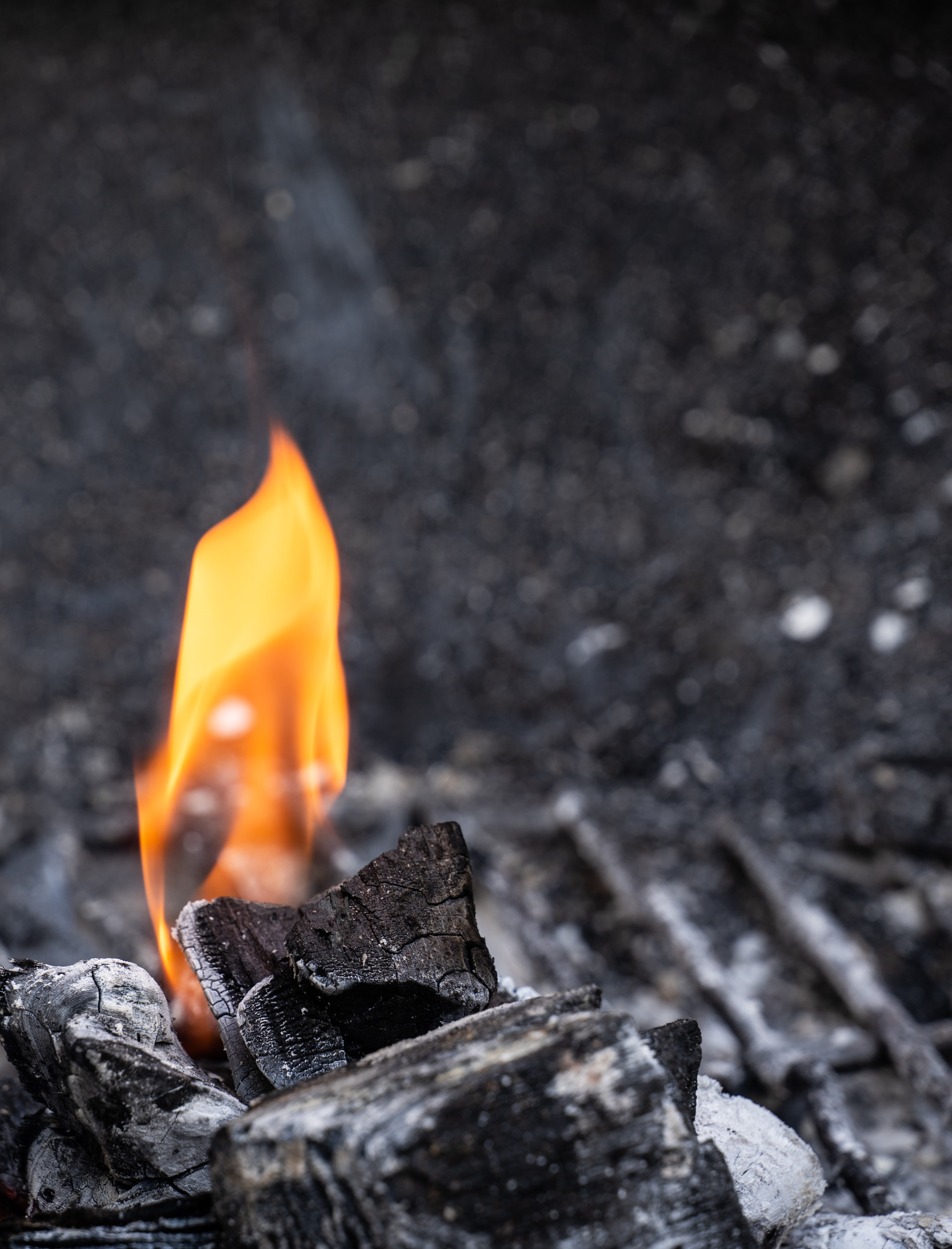 fire on wood