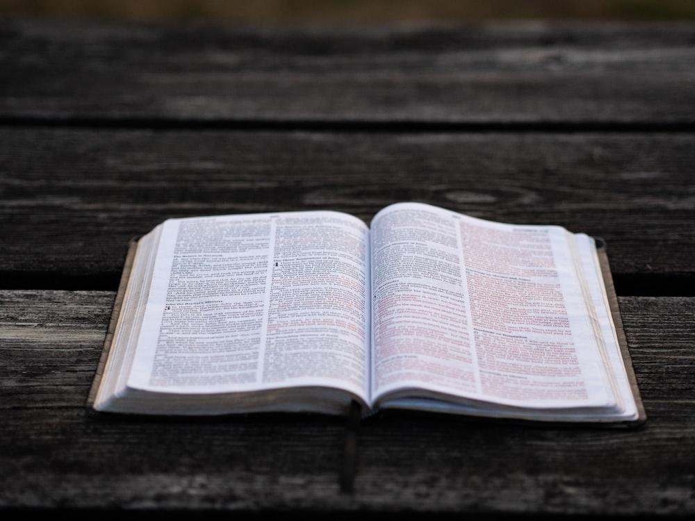 Bible Verse Wallpapers Free Hd Download 500 Hq Unsplash