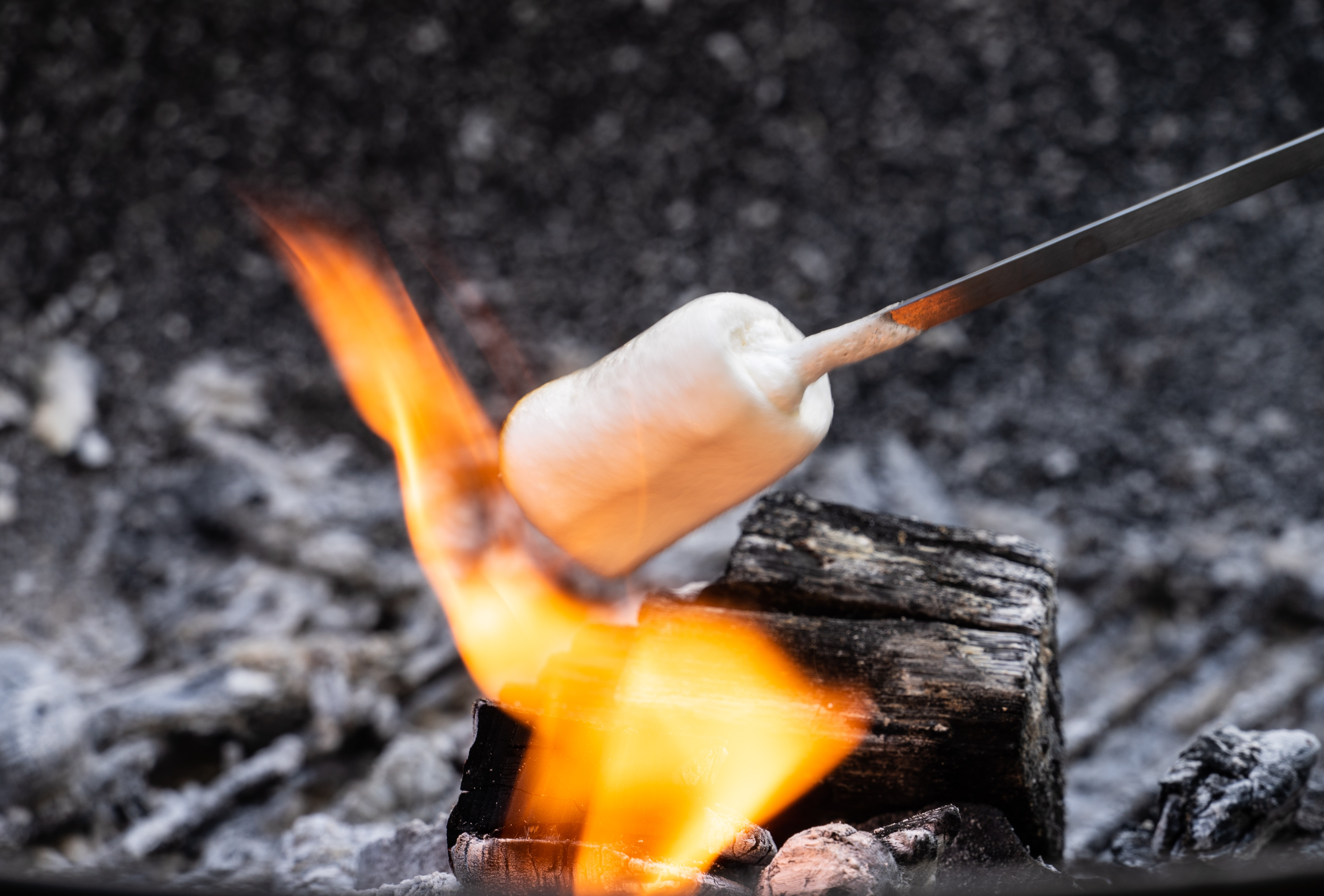 closeup photography of burning skewered marshmallow