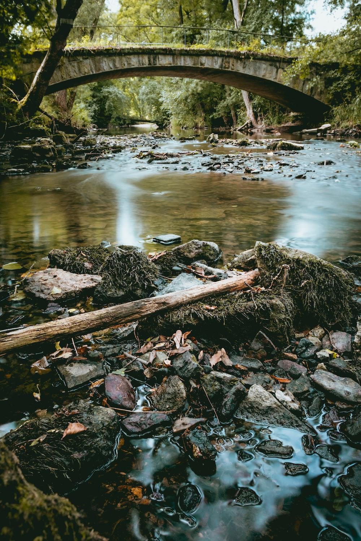 bridge over river at daytime photo