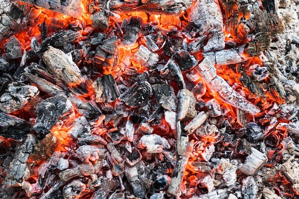burning firewood photo