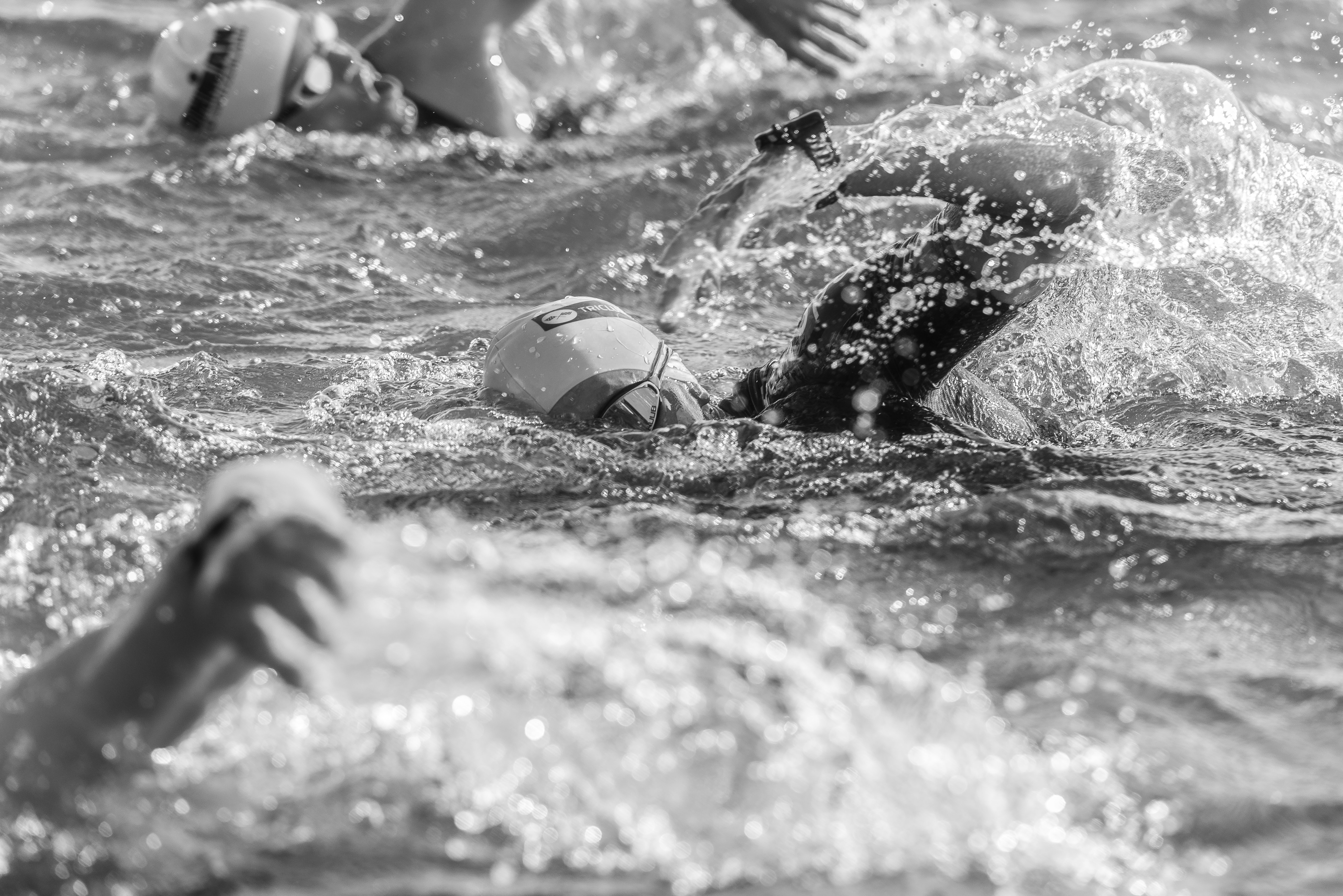 grayscale pjoto of swimmers
