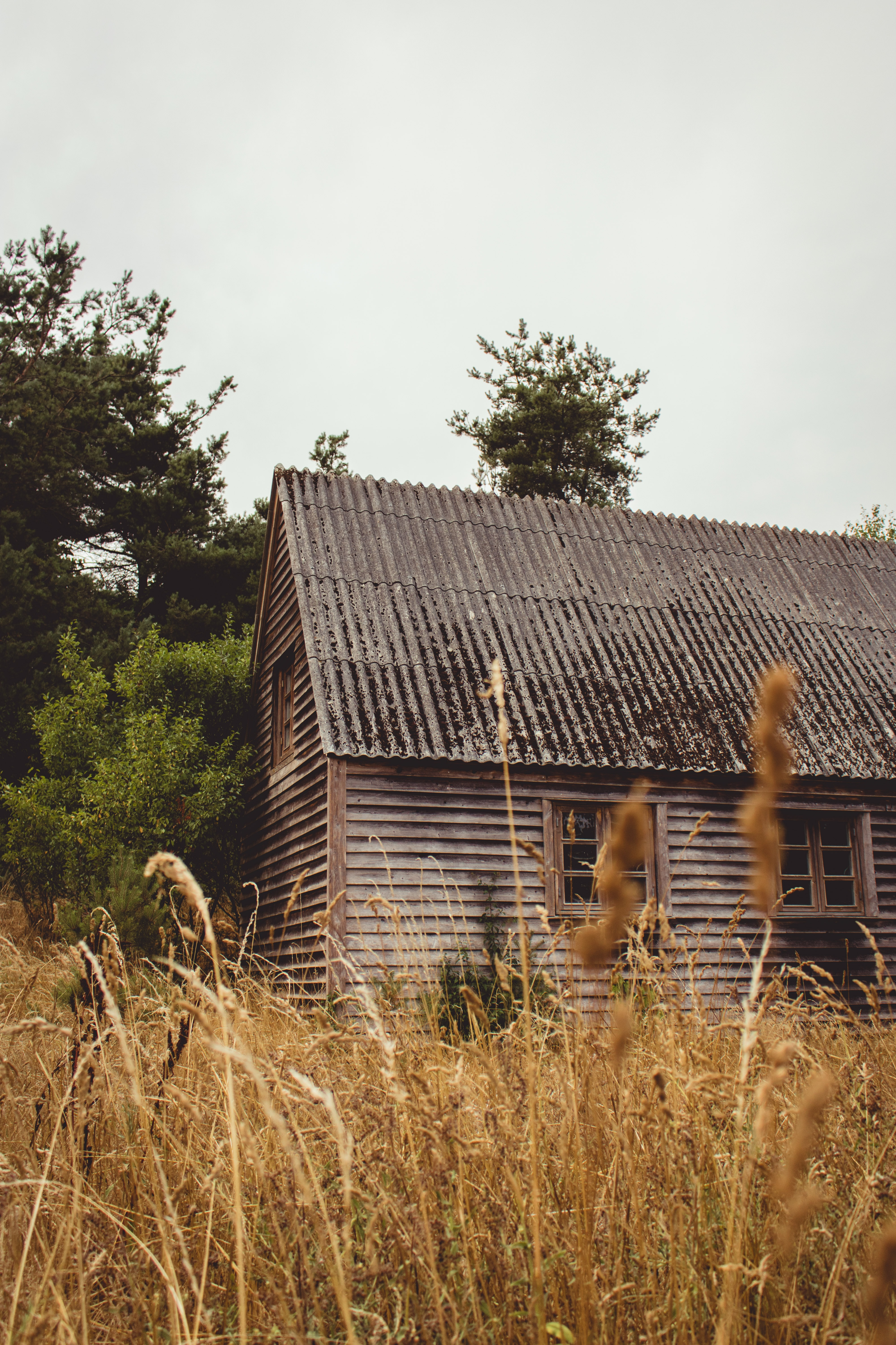 brown wooden cabin on field of grass