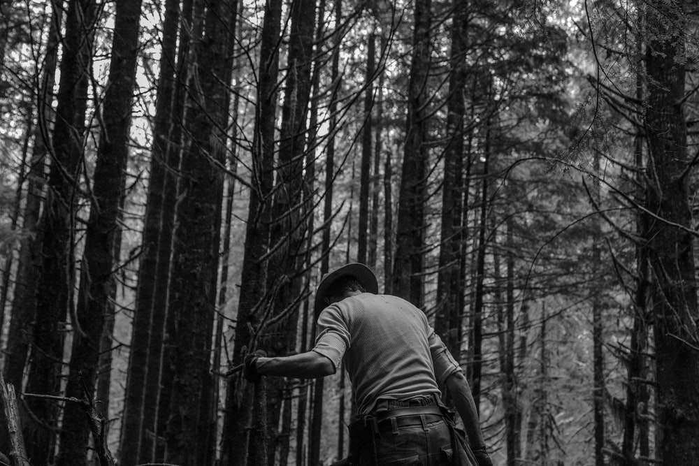 man standing in forest grayscale photography