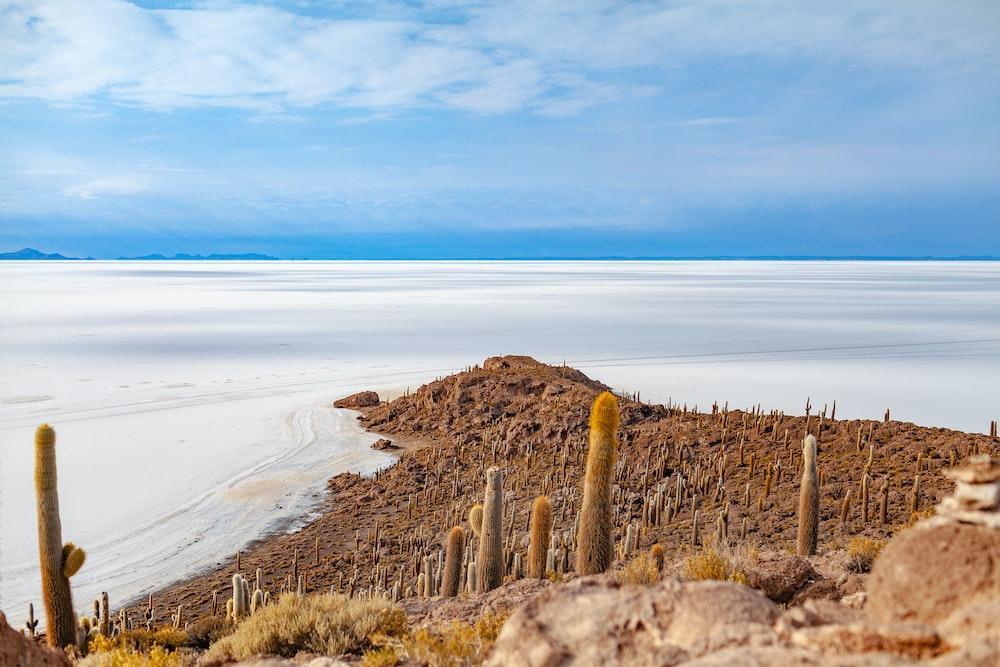 landmark photography of sand and mountain
