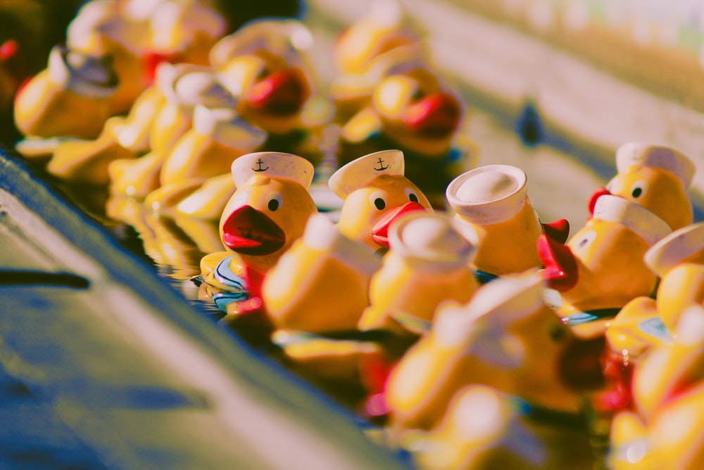 yellow duckies toys on metal surface