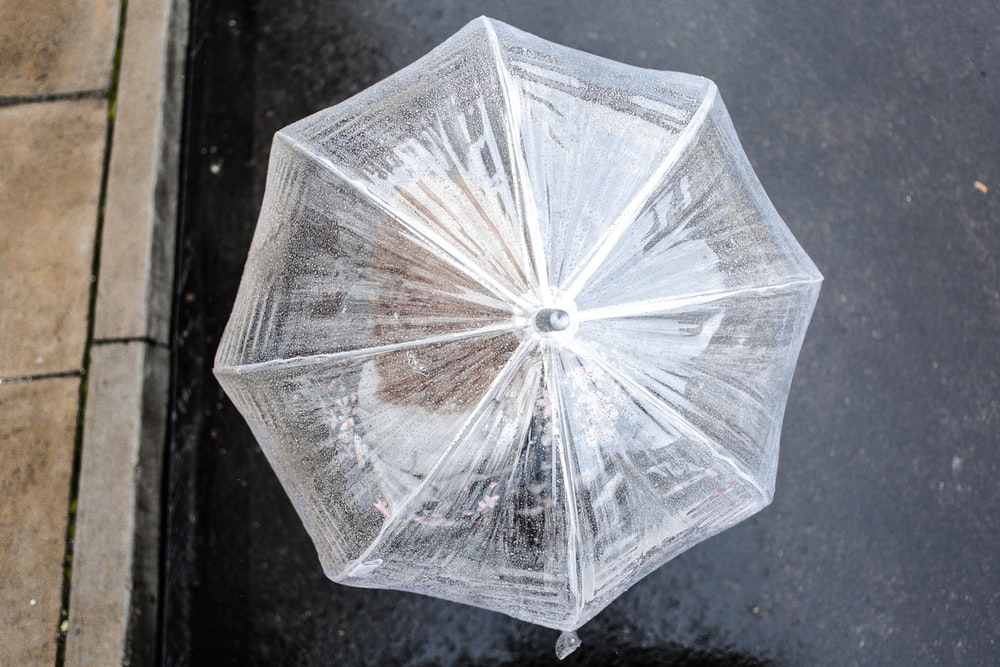 clear plastic umbrella