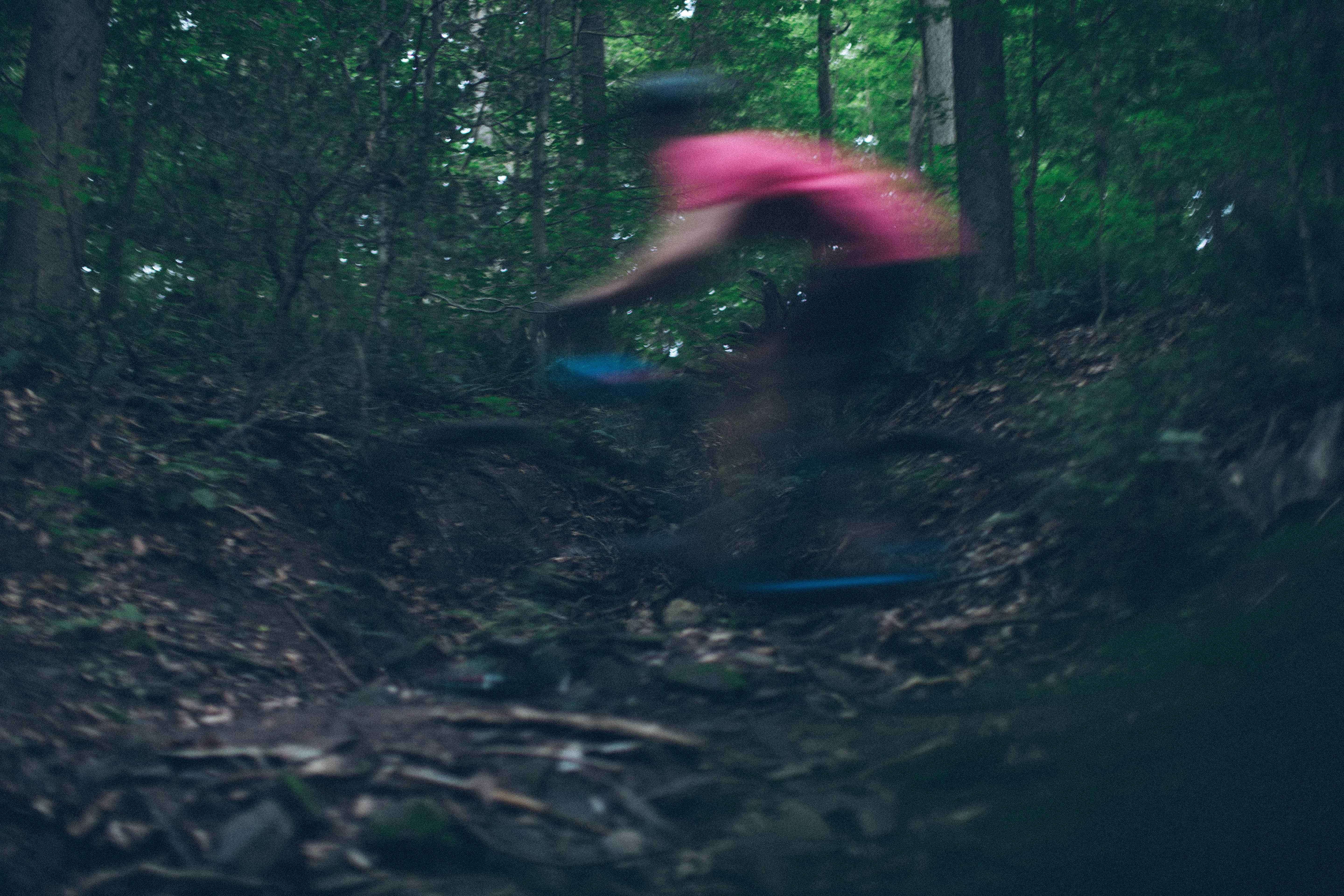 person riding on bicycle in forest