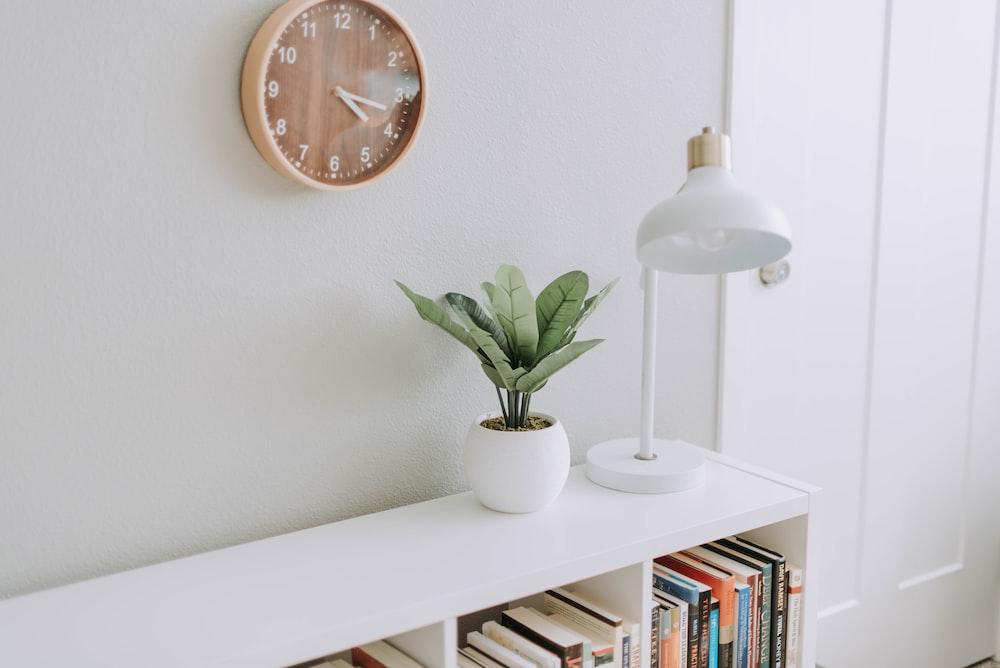 green plant on white pot beside white study lamp