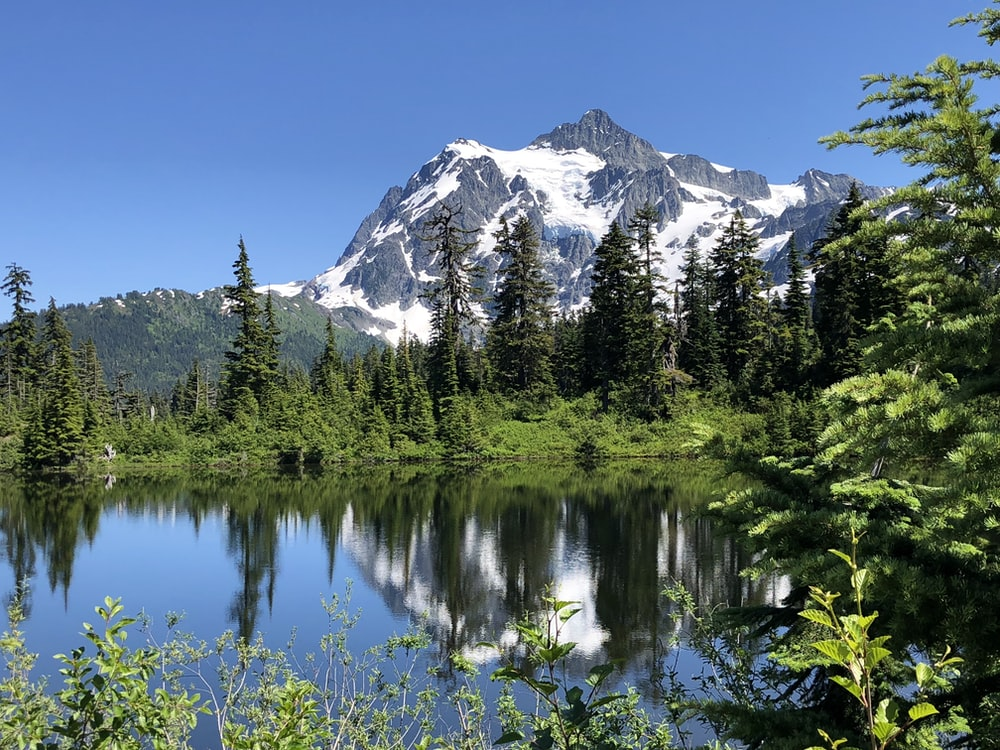 snow capped gray mountains near green pine trees and calm body of water