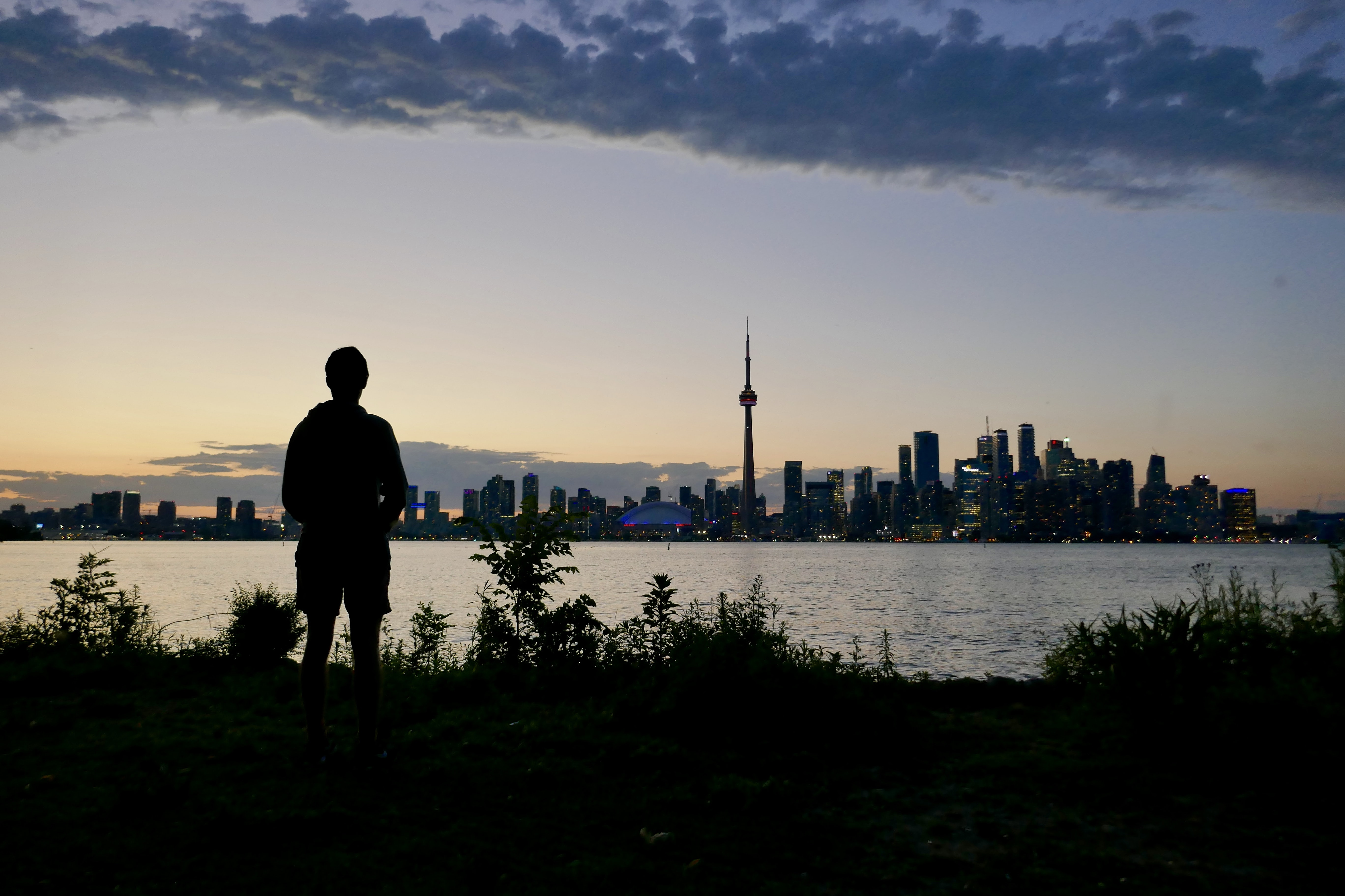 silhouette of a man standing on the grass in front of the city
