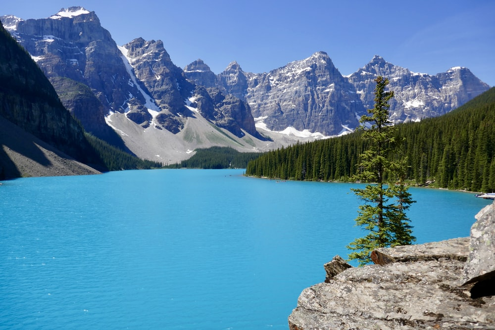 body of water surrounded by mountains and trees